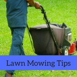 Lawn Mowing Quick Tips